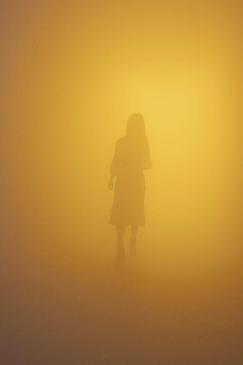 Din blinde passager (Your blind passenger), 2010